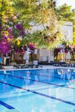 Swimming pool at hotel with bar. Empty hotel, palm trees, umbrellas.  royalty free stock images