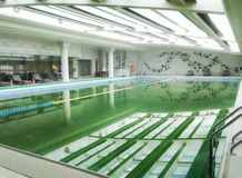 swimming pool indoor Stock Photography