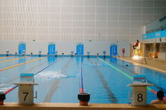 Swimming pool indoor landscape Stock Photography