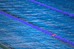 Swimming pool lanes Stock Images