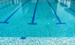 Swimming pool. A line of swimming pool with fresh water Royalty Free Stock Photography