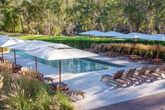 Swimming Pool Of A Luxury Australian Hotel Resort. The swimming pool area shaded with umbrellas, in a luxury Australian hotel resort, surrounded by tropical royalty free stock photos
