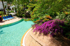 Swimming pool at luxury hotel Stock Photos