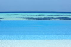 Swimming pool in Maldives beach Royalty Free Stock Images
