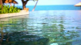 Swimming pool near the sea, island Koh Samui. Thailand. Set 3 clips shift motion stock video footage