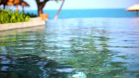 Swimming pool near the sea, island Koh. Samui,Thailand. Video shift motion 1920*1080 stock footage