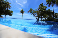 Swimming pool nearby Pacific ocean stock photography
