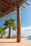 Swimming Pool and nice Palm. Tropical Scene with swimming pool and nice palm Royalty Free Stock Image