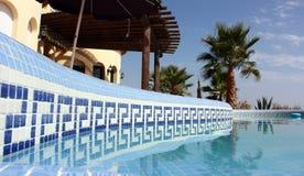 Swimming Pool and nice Palm. Tropical Scene with swimming pool and nice palm Stock Photo