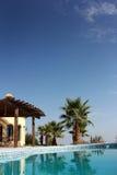Swimming Pool and nice Palm. Tropical Scene with swimming pool and nice palm Royalty Free Stock Photo