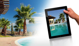 Swimming Pool, Palm and tablet pc. Tropical Scene with swimming pool and tablet pc Royalty Free Stock Image
