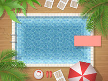 Swimming pool and palm top view. Swimming pool and palm tree top view. Vector illustration of an active vacation or a party Royalty Free Stock Photography