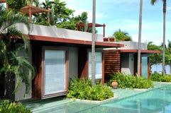 Swimming Pool Palm Tree Resort Stock Images