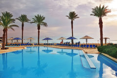 The swimming pool and palm trees Royalty Free Stock Images