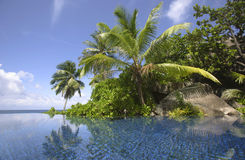 Swimming pool and palm trees of the Banyan Tree Hotel, Anse Intendance, Mahe`, Seychelles Royalty Free Stock Images