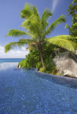 Swimming pool and palm trees of the Banyan Tree Hotel, Anse Intendance, Mahe`, Seychelles Stock Images