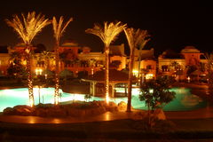 Swimming pool and palm trees at night Stock Photos