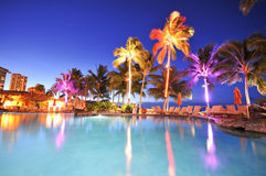 Swimming pool with palm trees at night time Stock Photography