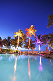 Swimming pool with palm trees at night time. Palm trees reflect in a swimming pool at night time Royalty Free Stock Image