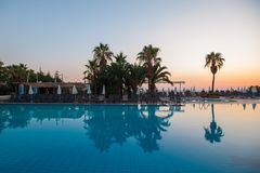 Swimming pool with palm trees at sunset. water reflection royalty free stock image