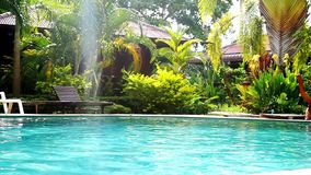 Swimming pool and palm trees in tropical garden with bamboo bungalow. paradise for tourists on sunny day with lens flare. Swimming pool and palm trees in stock footage