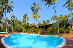 Swimming pool with palm trees at tropical resort Royalty Free Stock Image