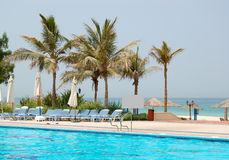 Swimming pool and palms at hotel Stock Images