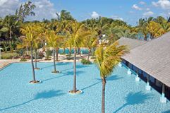 Swimming pool with palms in a resort in Mauritius Stock Photos