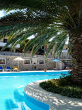 Swimming pool with palmtree. Swimming pool in the resort - Crete Stock Images