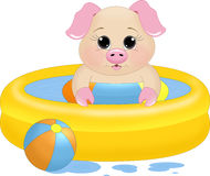 Swimming pool Piglet Stock Images