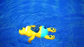 Swimming pool plastic yellow dog footage hd