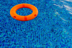 Swimming pool with pool ring. Stock Photo