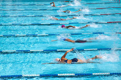 Swimming pool in a race. The swimming competition. Swimming butterfly.Swim freestyle Royalty Free Stock Photography