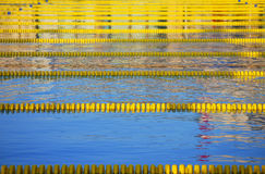 Swimming pool with racing lanes Stock Photography