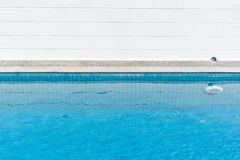 Swimming pool for relax. Swimming pool with blue water for relax stock photos