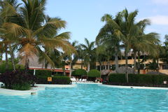 Swimming pool at resort. Swimming pool flanked by palm trees at resort Royalty Free Stock Photo