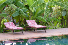 Swimming pool of resort hotel Stock Image