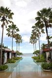 Swimming Pool Resort Sea Palm Tree Stock Photography