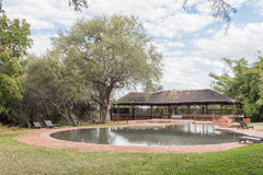 Swimming pool at rest camp the Waterberg Plateau National Park Stock Photo
