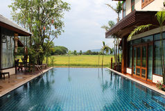 Swimming pool. With rice field and mountain view Royalty Free Stock Images