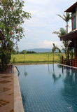 Swimming pool. With rice field and mountain view Stock Images
