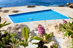 Swimming pool, sea and flower Royalty Free Stock Images