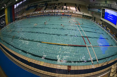 Swimming Pool Sports Complex. MOSCOW - APRIL 6: Swimming Pool Sports Complex Olimpiyskiy (Olimpiski) during the game Dynamo-CST Moscow (white) vs Sintez Kazan ( Stock Photo