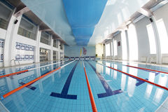 Swimming pool. Sports swimming pool six paths Royalty Free Stock Photo