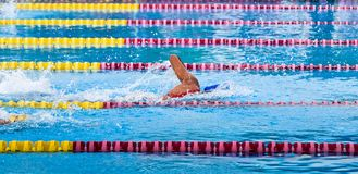 Swimming at pool, Sporty Royalty Free Stock Photography