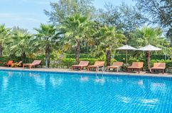 Swimming pool with palm tree, sunbed and white umbrella Royalty Free Stock Photo
