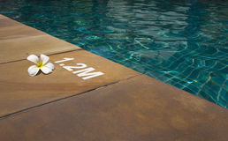 Swimming pool with sunny reflections Royalty Free Stock Images