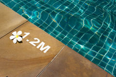 Swimming pool with sunny reflections Royalty Free Stock Photo