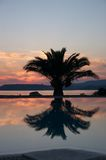 Swimming pool sunset. This is a swimming pool sunset wuth the reflection of the palm tree. it is located in the touristic area of Lassi in Cephalonia island in Royalty Free Stock Photos