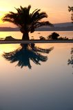 Swimming pool sunset. This is a swimming pool sunset wuth the reflection of the palm tree. it is located in the touristic area of Lassi in Cephalonia island in Stock Photo